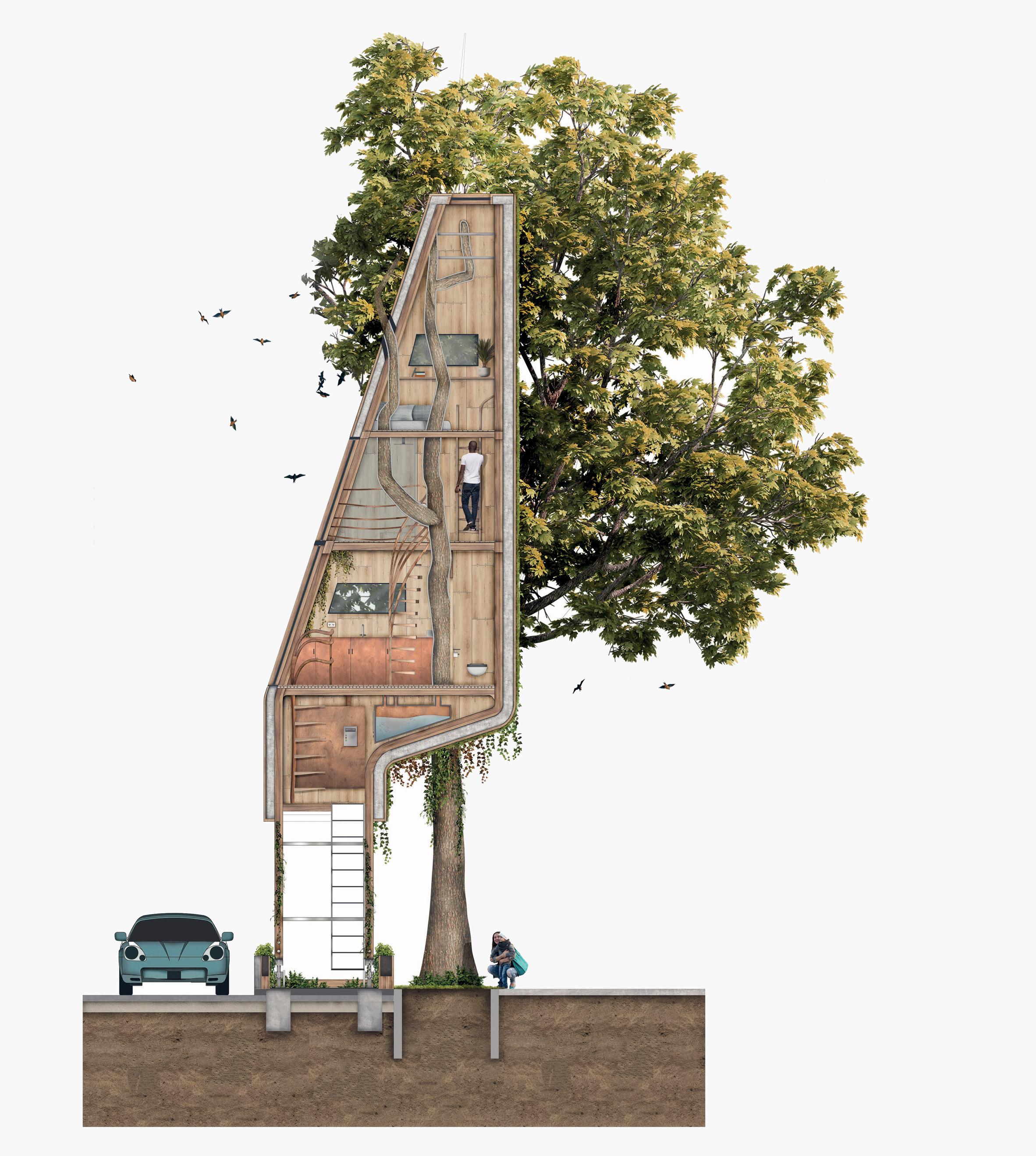 Ствол дерева является элементом конструкции здания