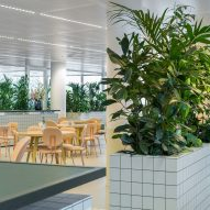 Space Encounters uses planted partitions to divide office in Utrecht