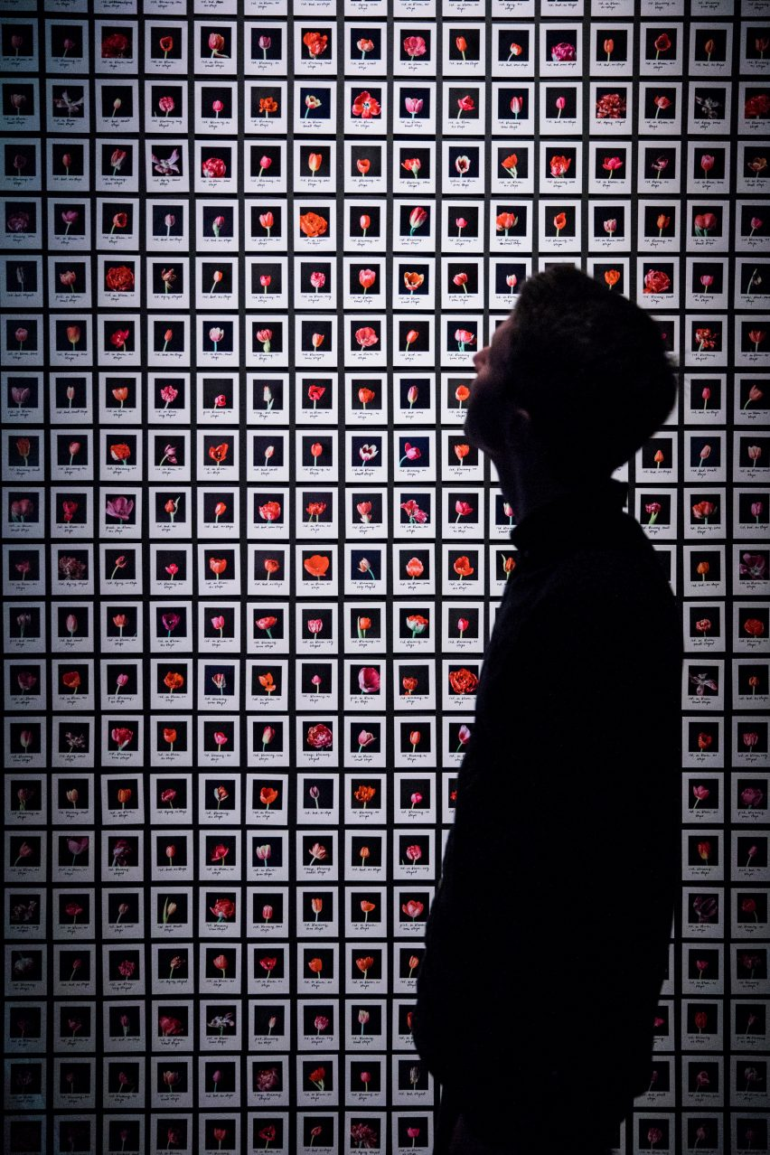 Barbican AI More than Human exhibition