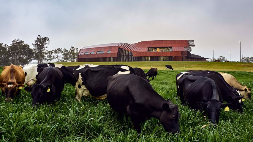 Bannister Downs Dairy in Northcliffe, Western Australia, by Bosske Architecture