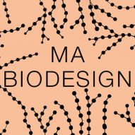 Central Saint Martins launches masters course in biodesign