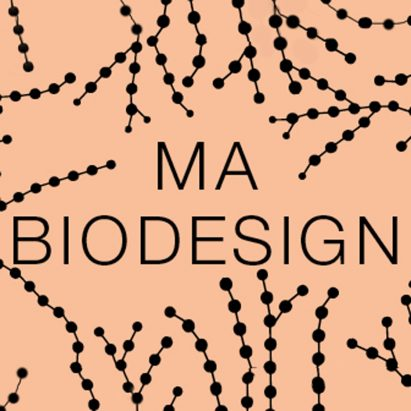 Central Saint Martins launches masters program in biodesign