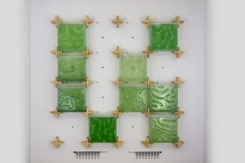 Hyunseok An The Coral algae farm
