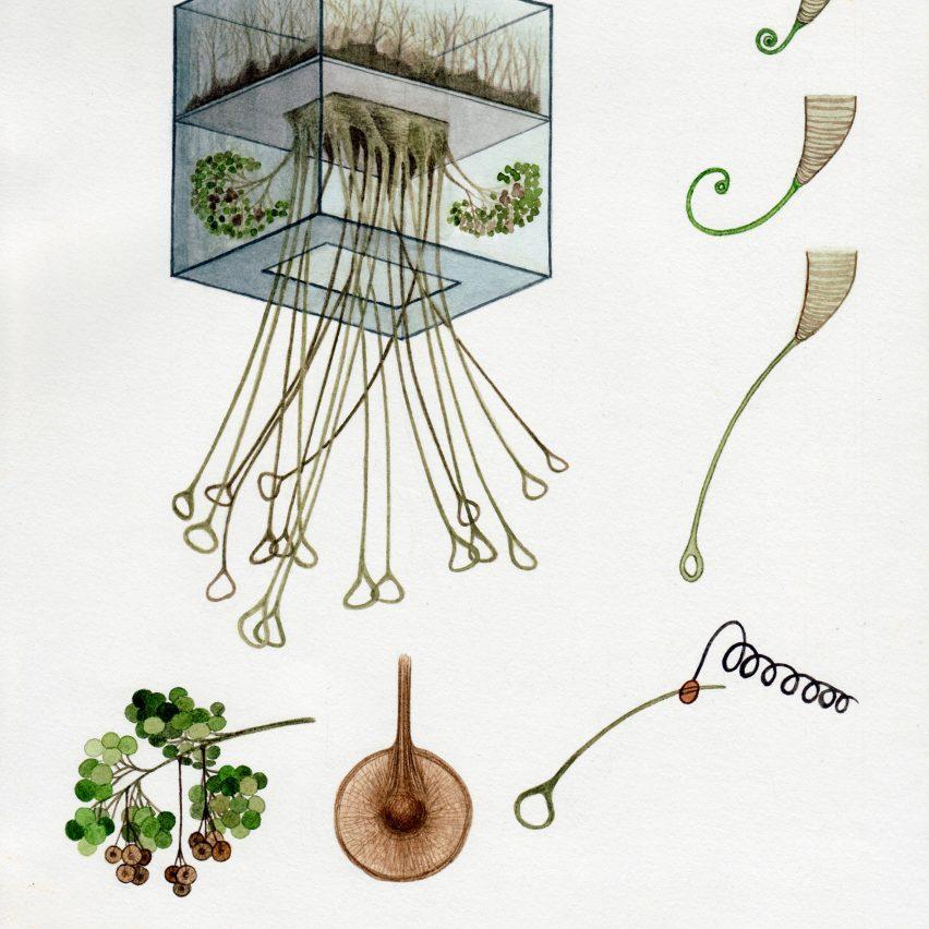 Alexandra Daisy Ginsberg Better Nature exhibition