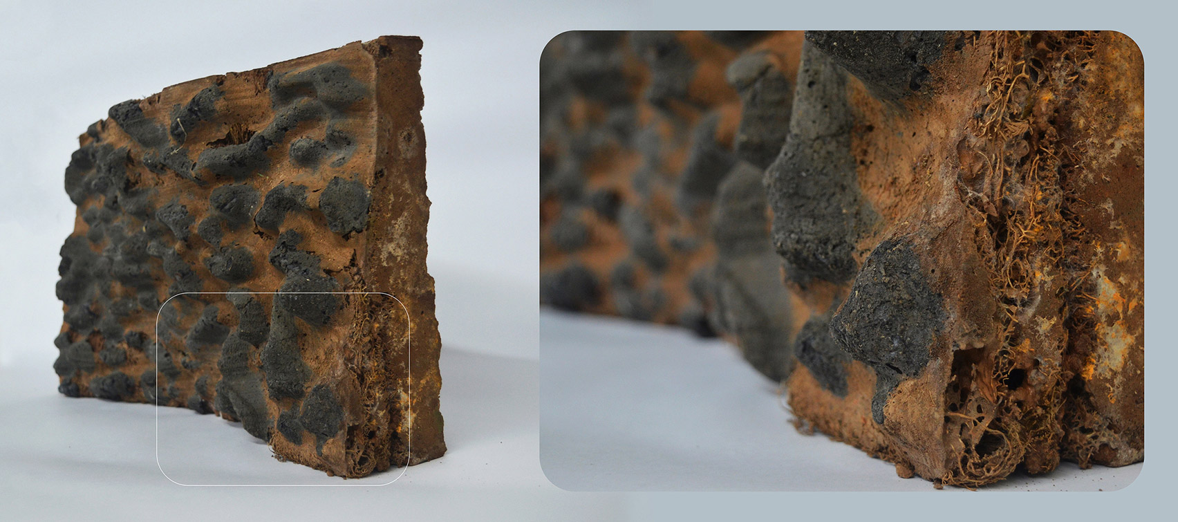 Green Charcoal bio-brick by Indian School of Design and Innovation Mumbai