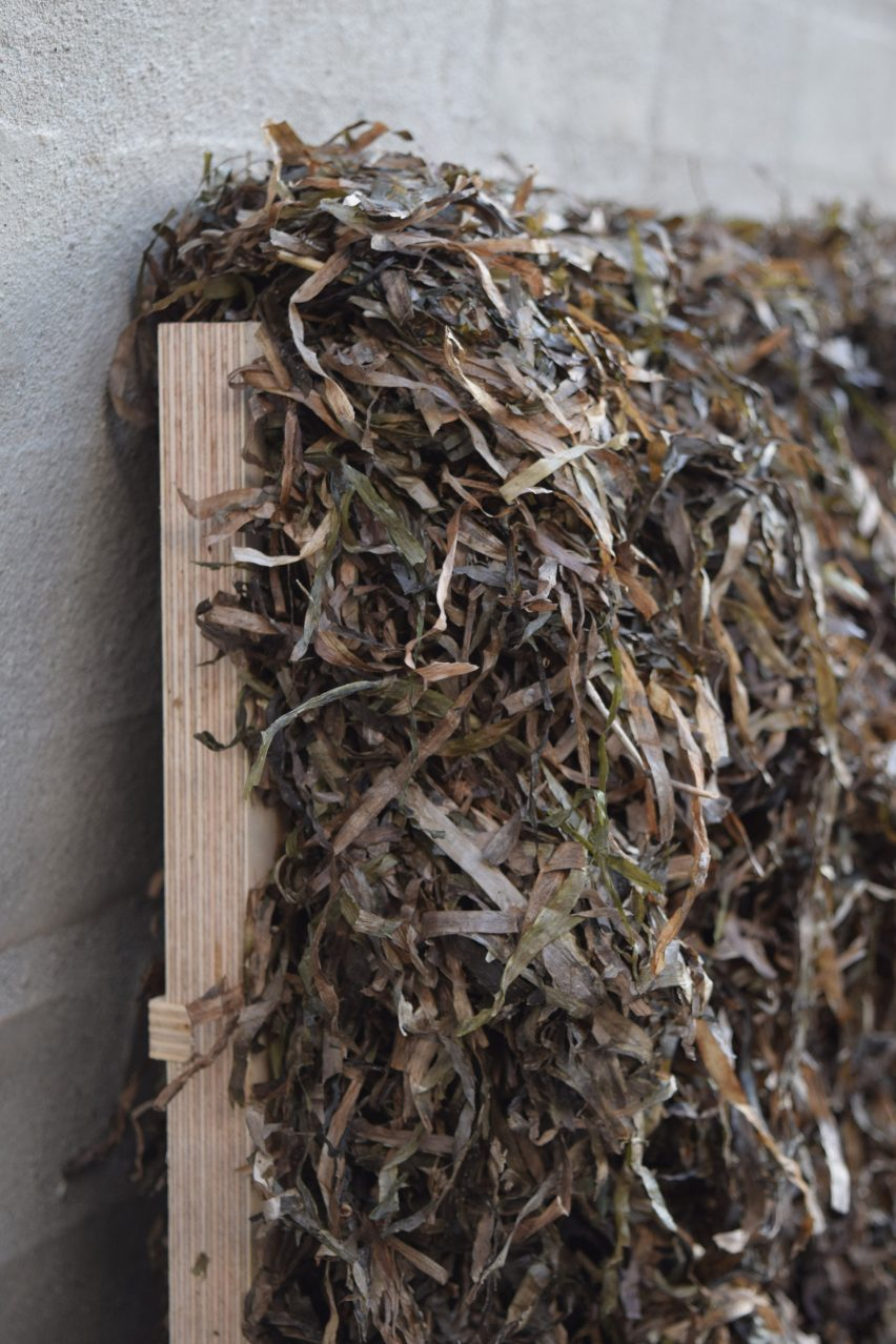 Seaweed Thatch Reimagined by Kathryn Larsen