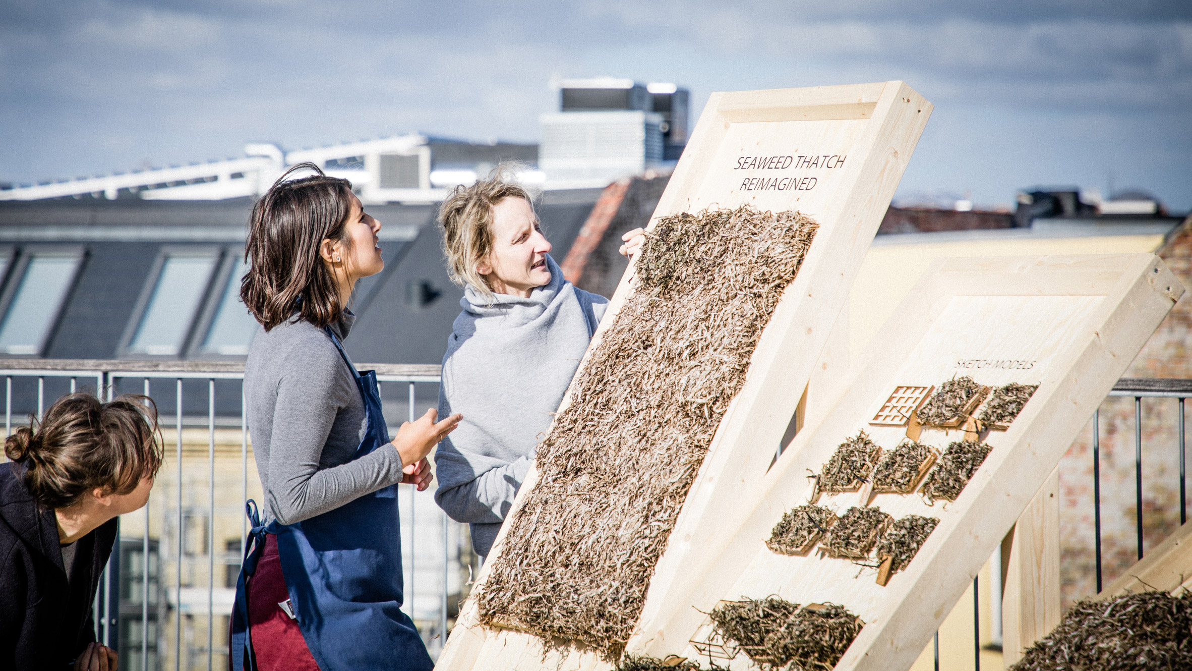 Viking-style seaweed thatch updated into prefab panelling