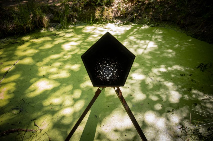Teresa van Dongen's Mud Well light uses microorganisms for electricity