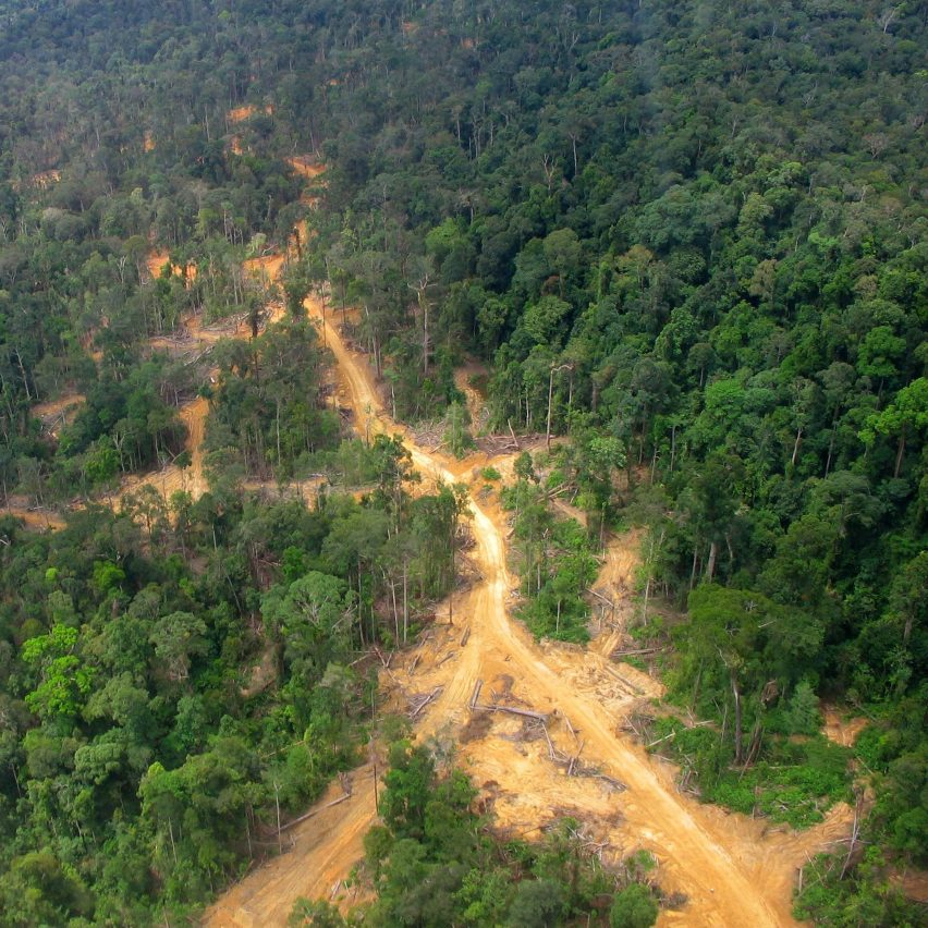East Kalimantan in Borneo, site of the new capital