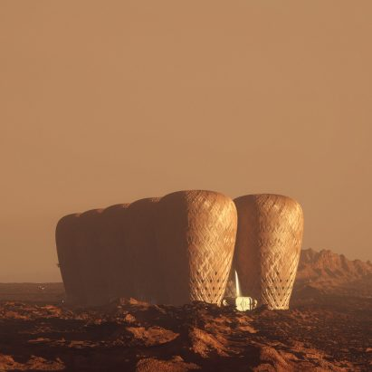 Seed of Life bamboo colony on Mars by Warith Zaki and Amir Amzar