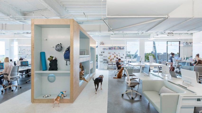 BARKBOX Office by NBBJ