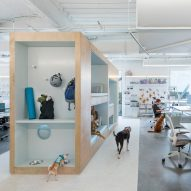 NBBJ designs Bark's Ohio office for both humans and dogs
