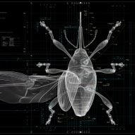 "Insects ""offer hints for the future of humankind"" says Taku Satoh"