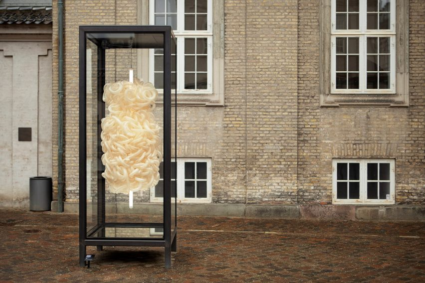 Kathrine Barbro Bendixen uses cow intestines for lighting