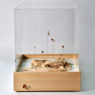 "Chiara Tommencioni Pisapia uses moths to transform unwanted clothing into ""precious"" bio-waste material"