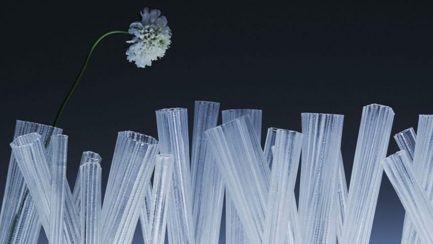 Ice Crystal. Photo is by Masayuki Hayashi