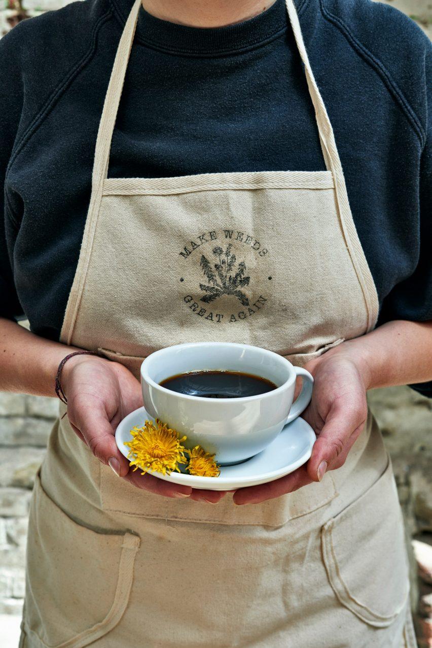 Dandelion coffee Daisy Newdick