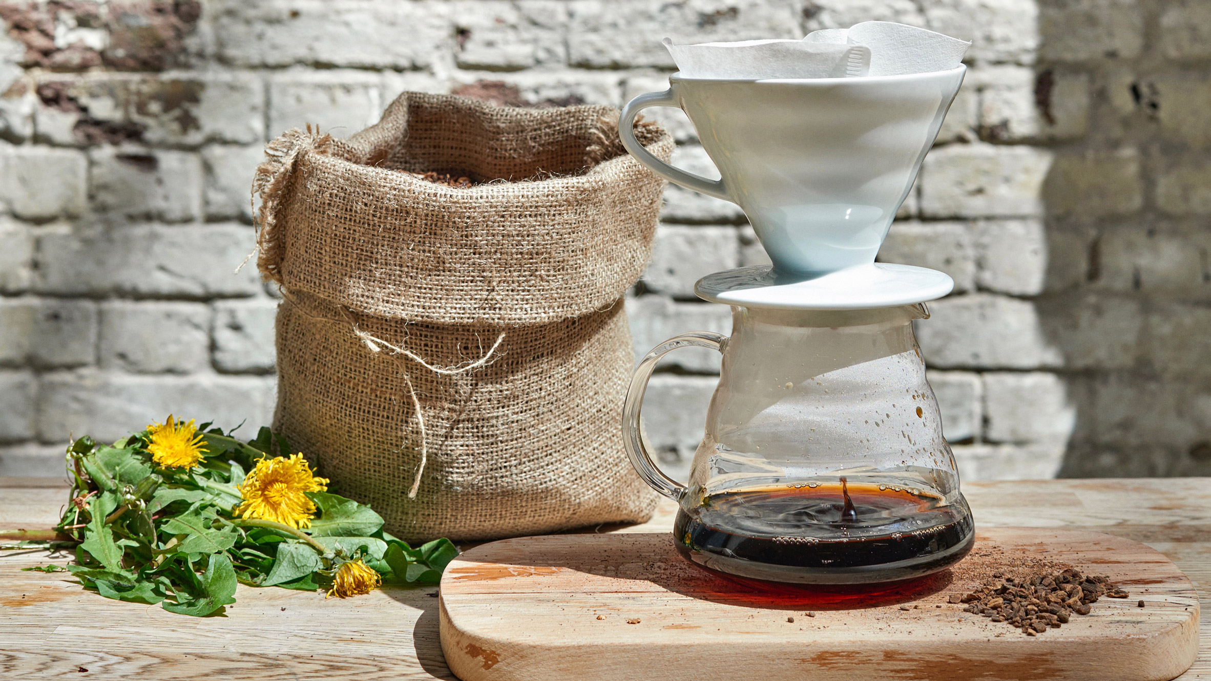 Daisy Newdick makes coffee from dandelions to promote biodiversity