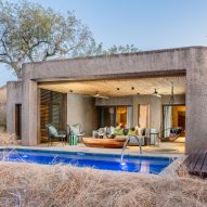 Competition: win a safari-filled two-night stay at Sabi Sabi in South Africa