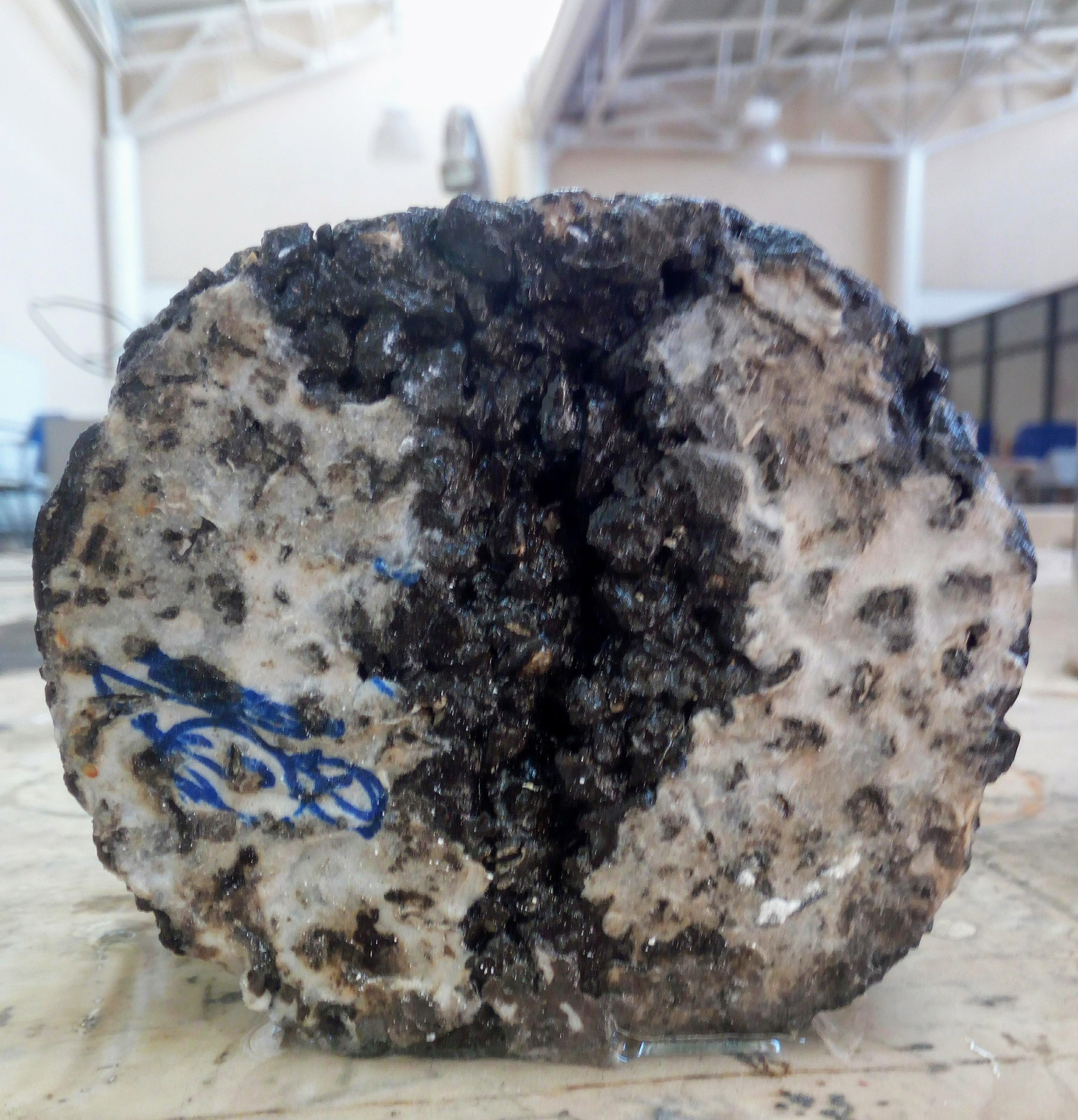 Recycled tyres form pavement that self-repairs when it rains
