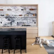 Plywood cabinetry makes the most of space in Brooklyn Loft for couple with two dogs