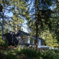 Heliotrope tucks Collector's Retreat into lush wooded site in coastal Washington