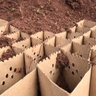 Ecosystem Kickstarter is a cardboard structure that fights soil erosion