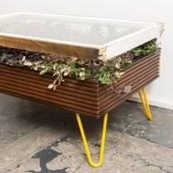 Hackney Botanical makes plant-filled coffee tables out of reclaimed windows