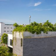 Vo Trong Nghia plants fruit trees on the roof of a house in Vietnam