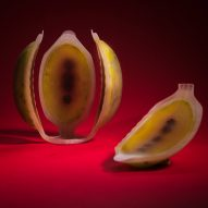 Meydan Levy creates 4D-printed artificial fruit filled with nutrients