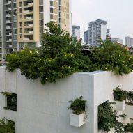 MIA Design Studio covers Vietnamese home with protruding planters