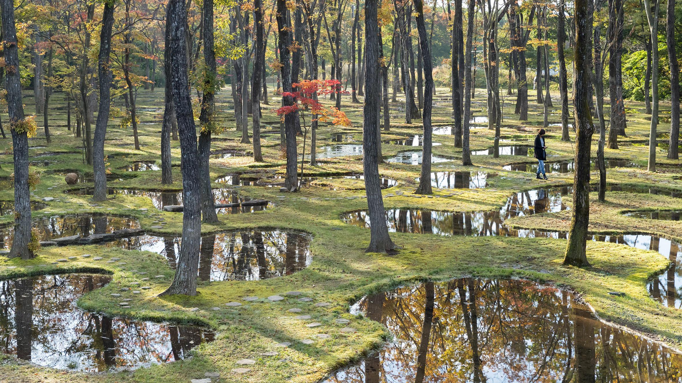 Art Biotop Water Garden by Junya Ishigam