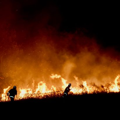Architects Assist: Australia bush fires