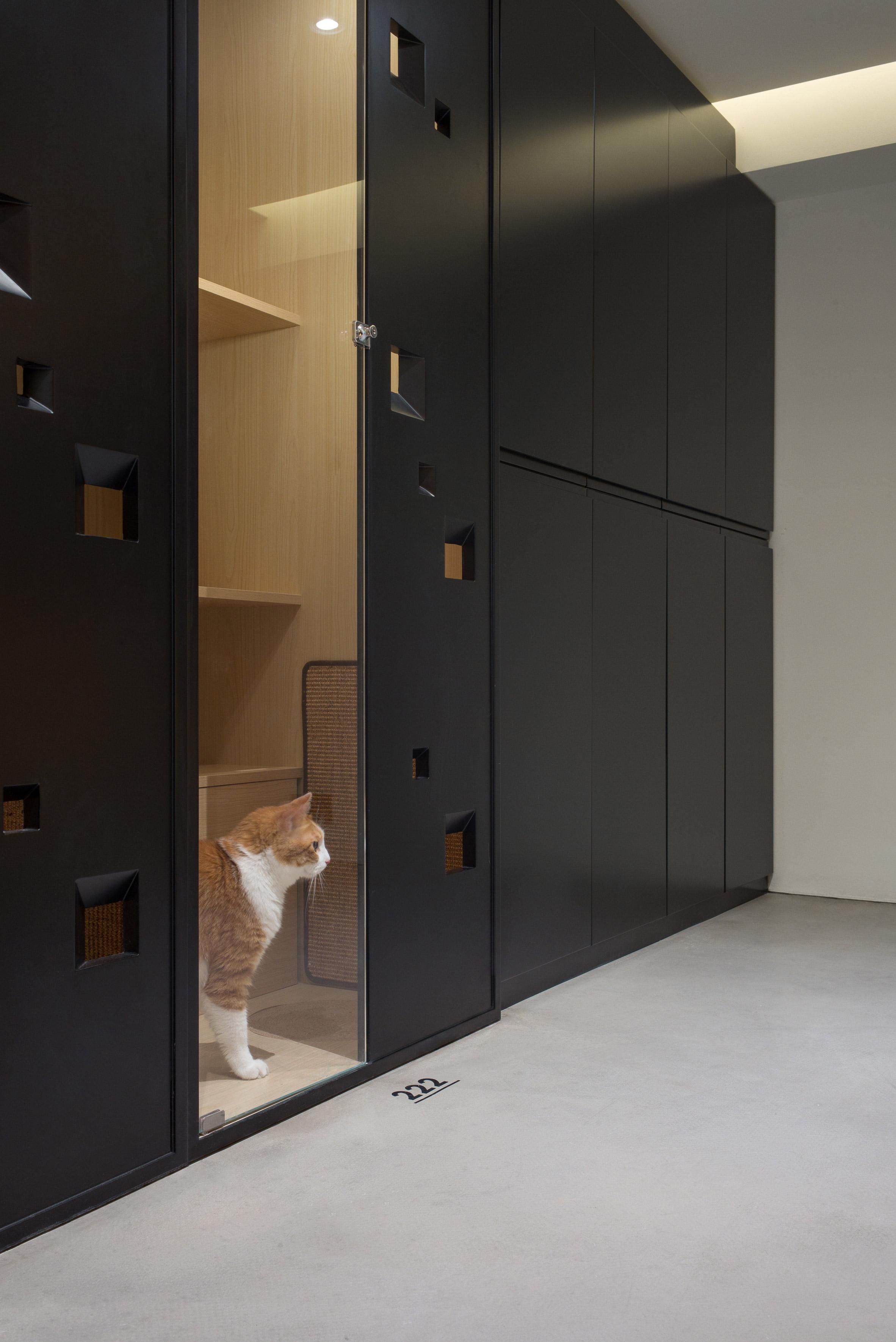 Nova Pets grooming salon by Say Architects