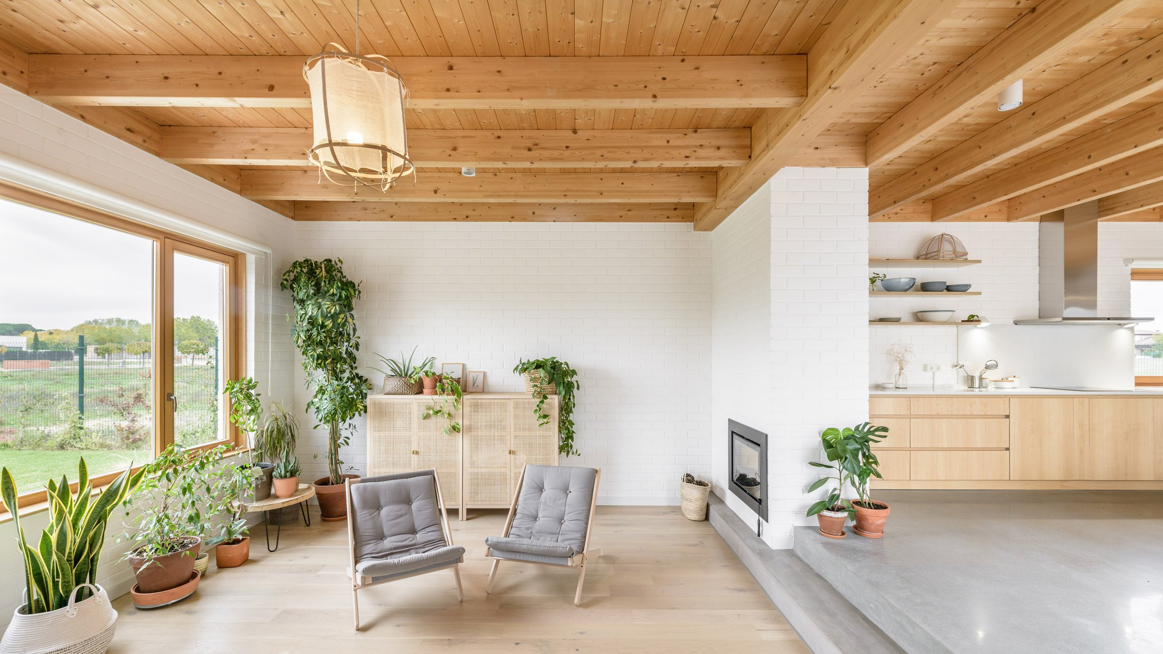 A white-walled living room with indoor plants