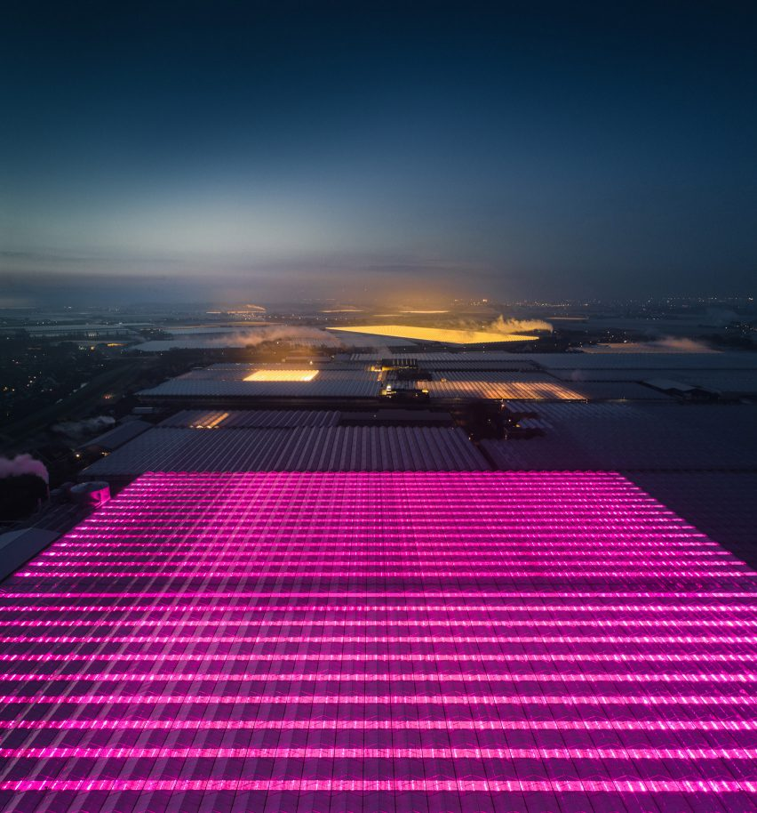 Greenhouses photography series by Tom Hegen