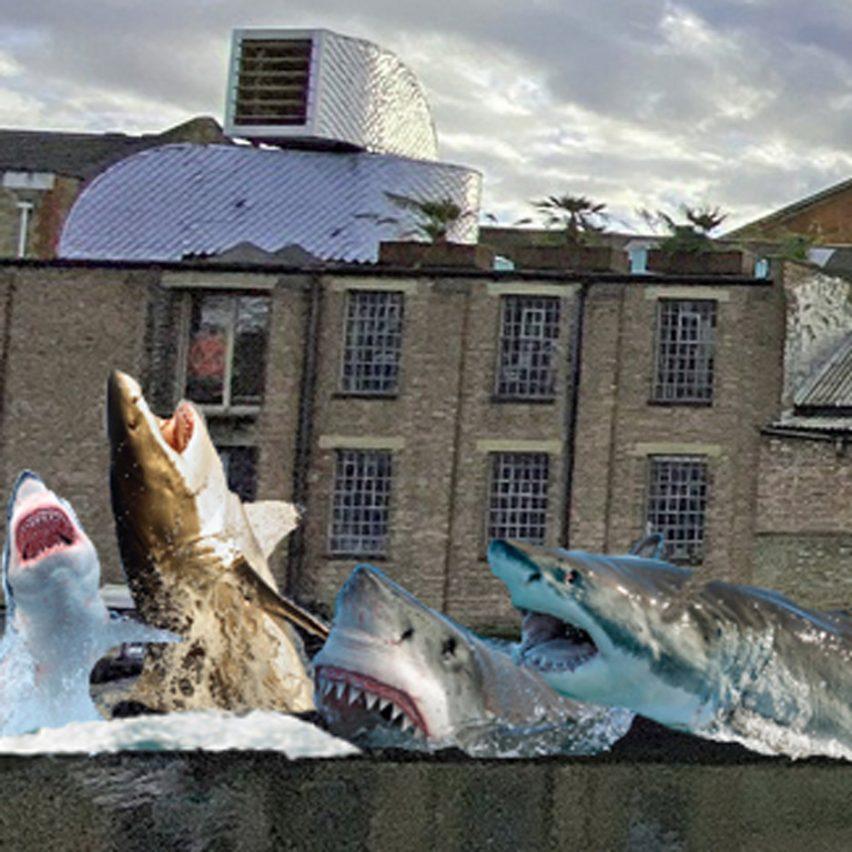 "Jaimie Shorten wins Antepavilion competition with ""anti-authoritarian"" shark installation"