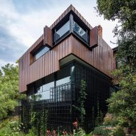 South Yarra House extension designed to look like a treehouse