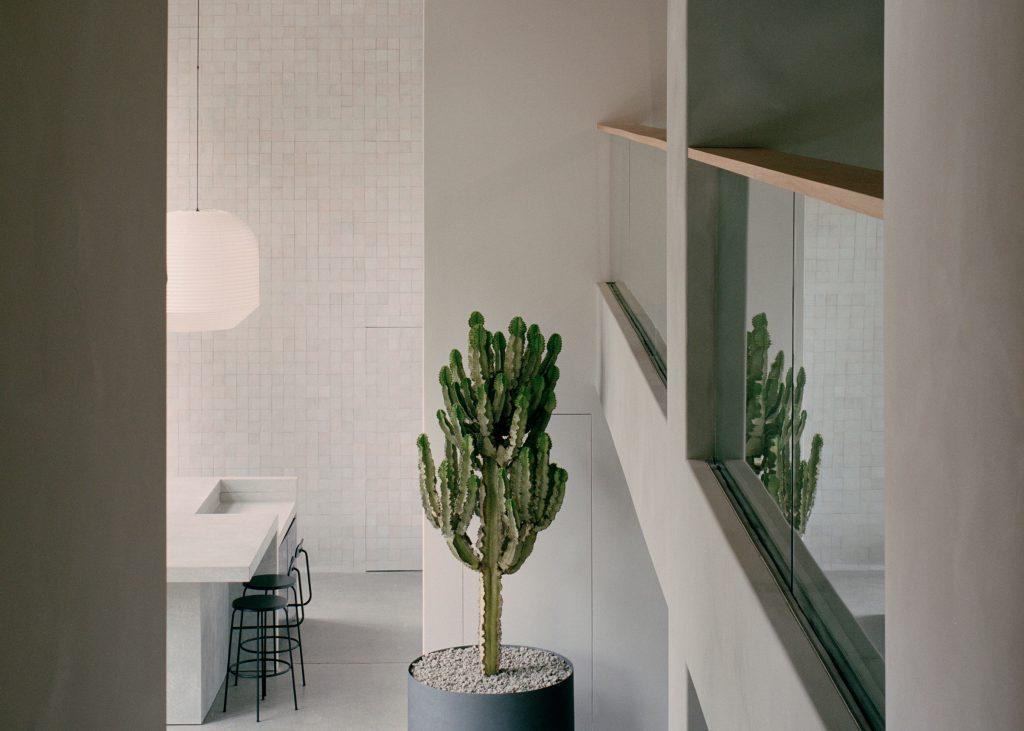 Studio Goss creates restrained interiors for Sydney's Armadillo & Co