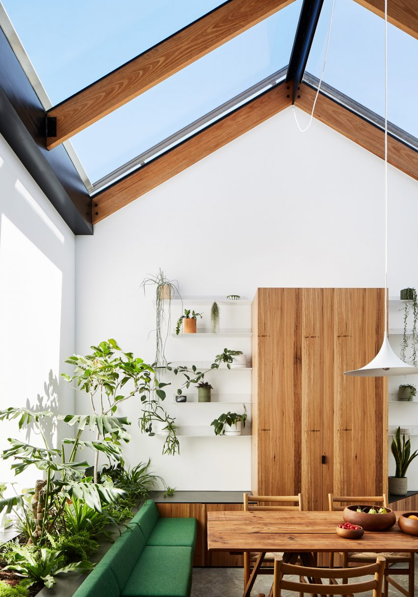 Plant-filled conservatory in dining space of Newry house by Austin Maynard Architects