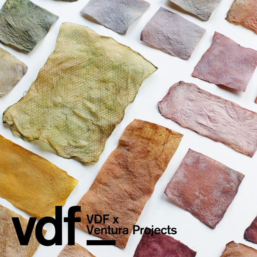 Ventura Projects x VDF