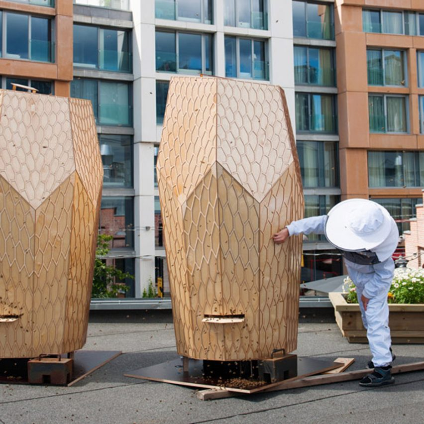 Seven urban refuges for bees living in cities