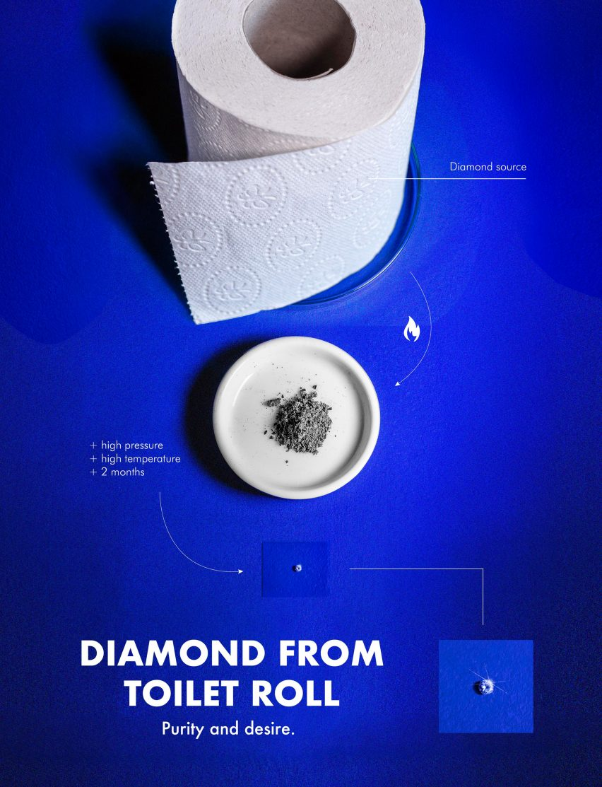Diamonds are Whatever by Aniela Fidler
