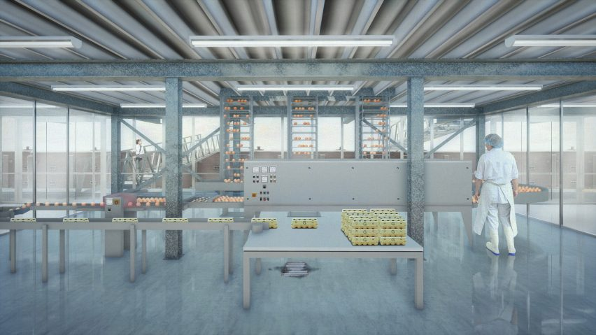 Floating Farm Poultry in Rotterdam by Goldsmith