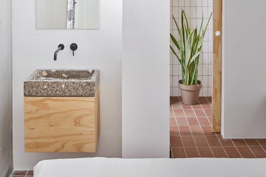 A white-walled bathroom with a snake plant
