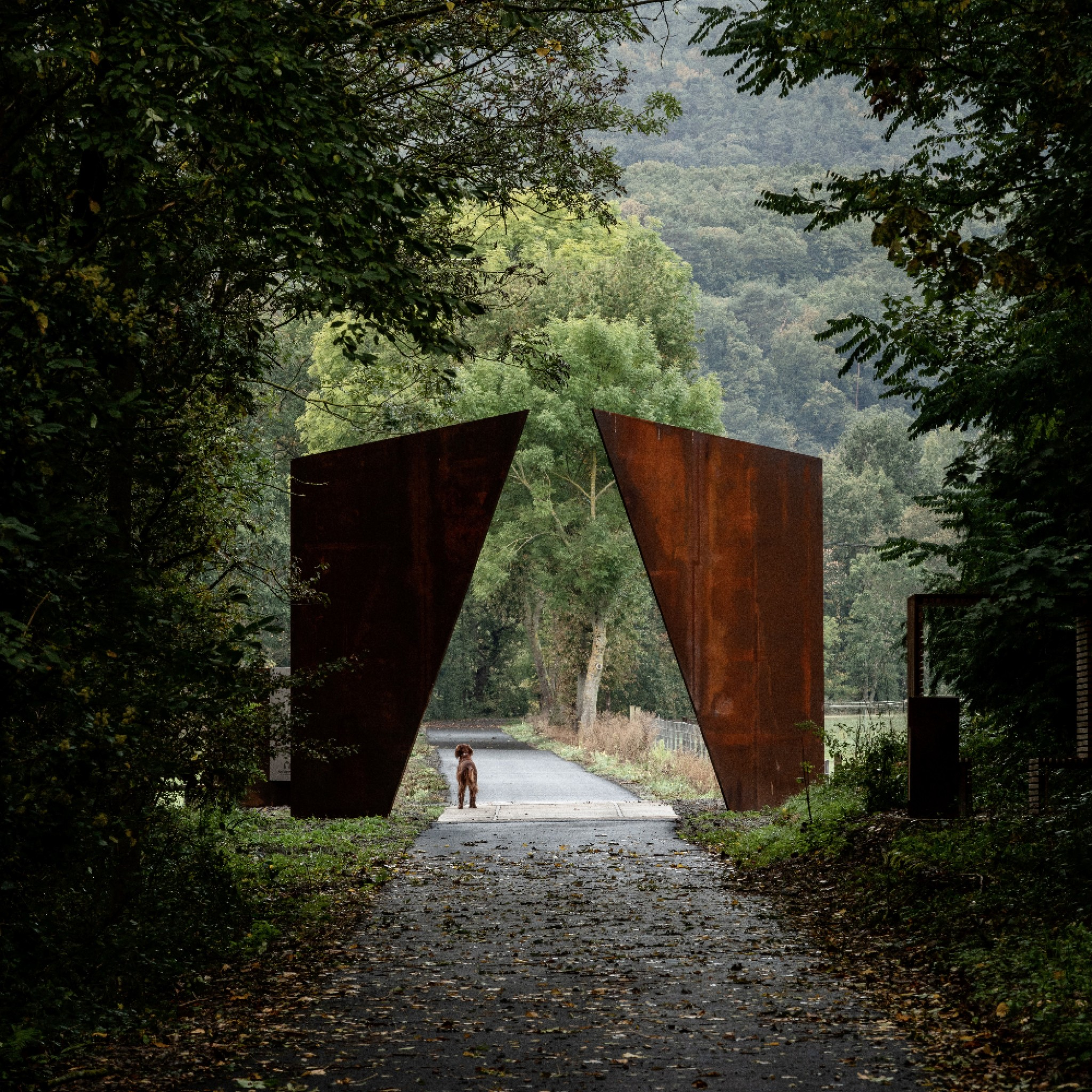 Chemin des Carrières