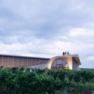 Lahofer Winery by Chybik + Kristof features undulating roof with amphitheatre
