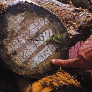 Last chance to enter Timber Trade Federation's Conversations about Climate Change competition