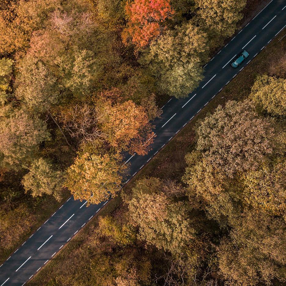 Dutch city Arnhem swaps asphalt for trees to adapt to climate change
