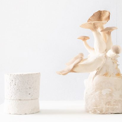 "Amen candles are shipped in ""carbon negative"" mycelium packaging"